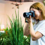 Best DSLR Cameras Under $400